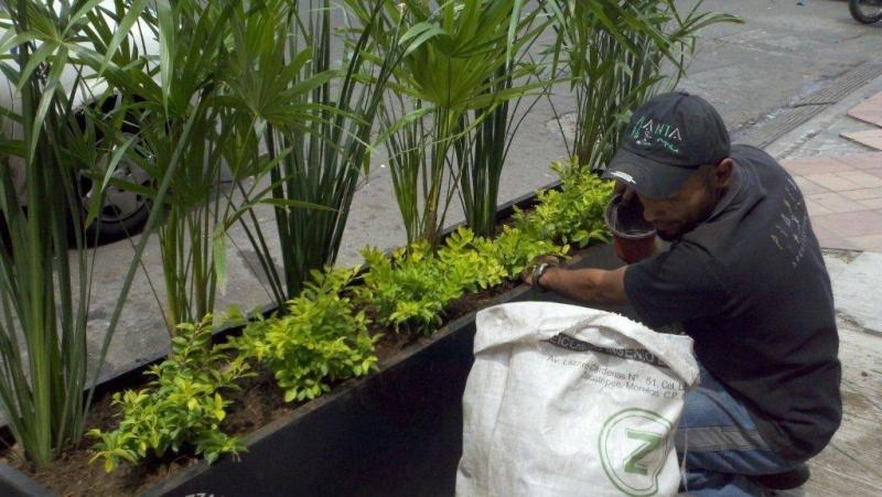 Servicios dymja for Mantenimiento de jardines